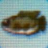 Giant snakehead.jpg